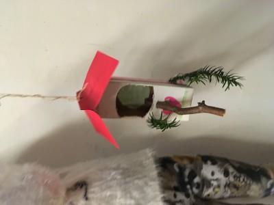 Het huisje is af. Een stok voor de vogel om mee naar binnen te gaan. En beschermd door de taxus takjes