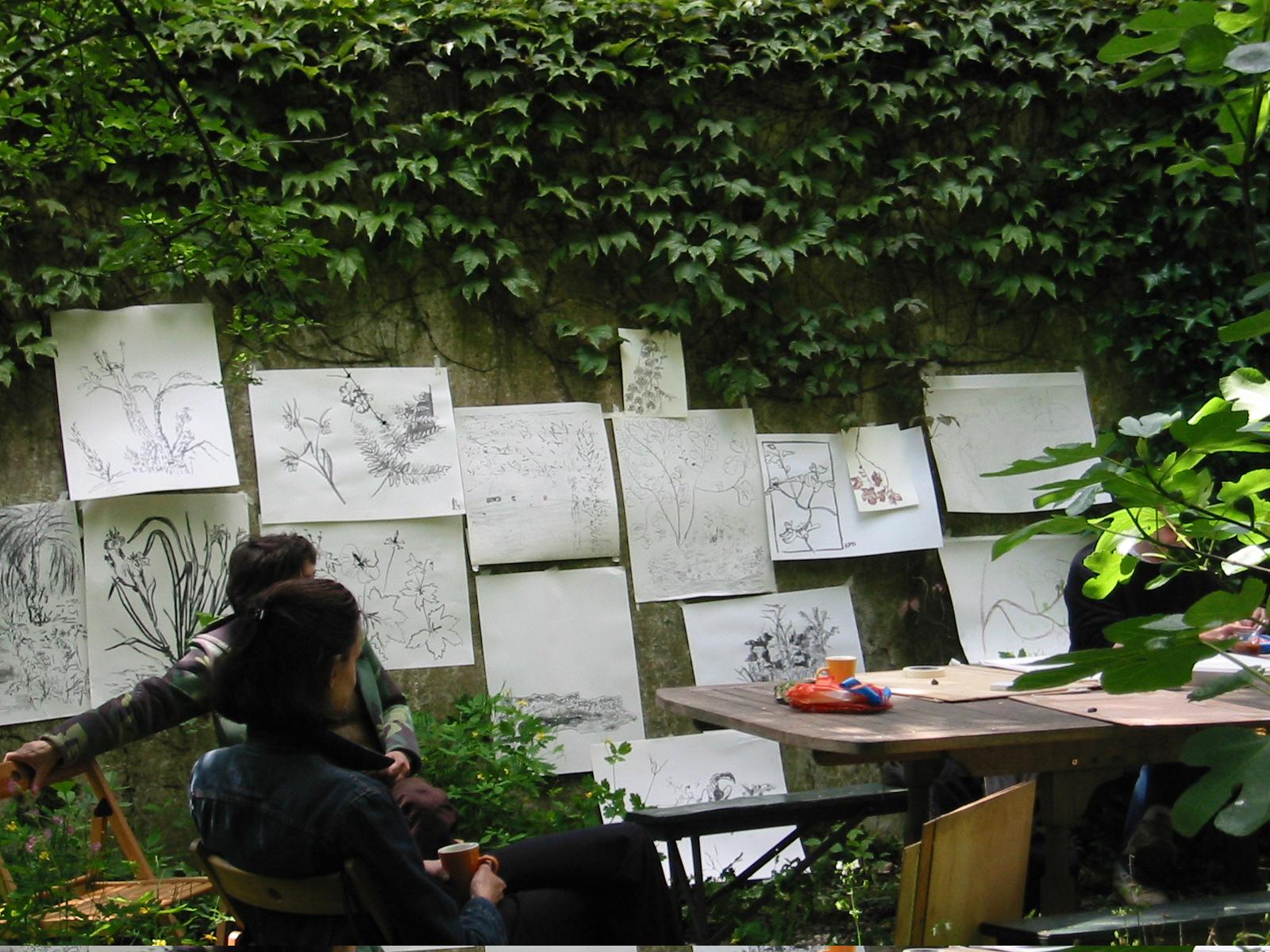 Voorbeeld van tekenen in de natuur , zonder op het papier te kijken. technieken: houtskool, oostindische inkt en potlood.